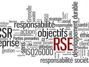Rapport RSE 2015 !